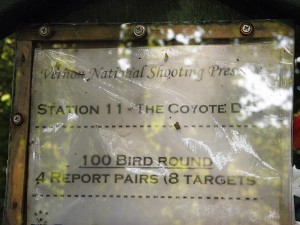 """Station 11 at Vernon is a """"report pairs"""" station. That means that the second target is not launched until you make your shot at the first target. At a """"true pairs"""" station, both birds are launched simultaneously."""